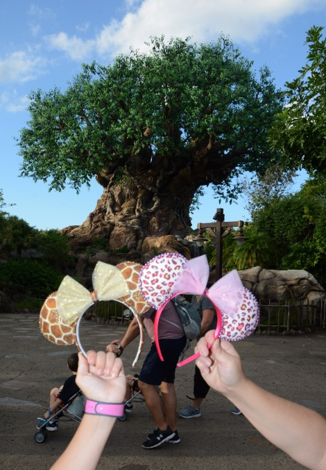 photopass_visiting_ak_7829551592_edited.jpg